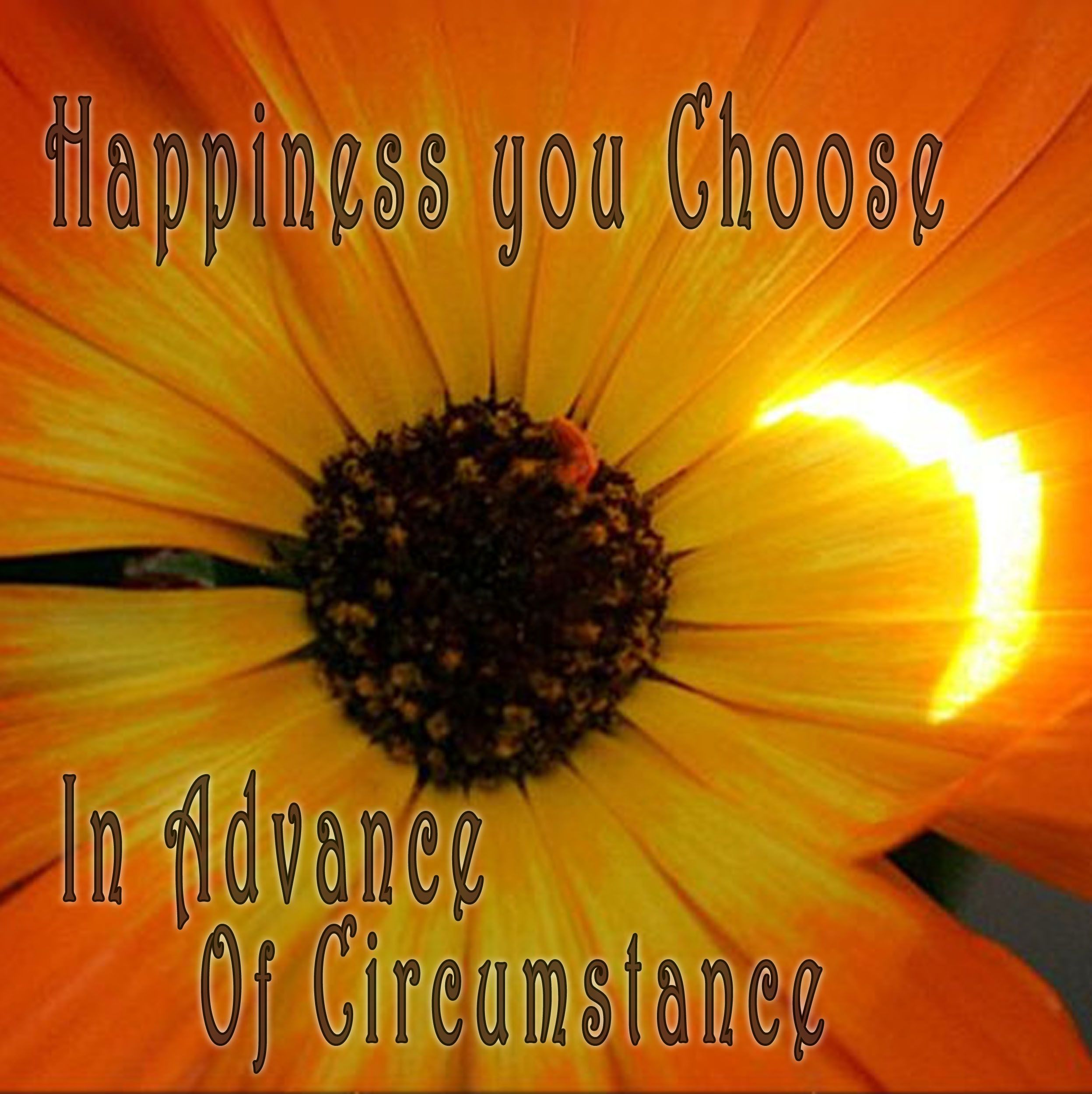 """""""Happiness you choose in advance of circumstance.""""  I've always loved this saying, now I realize this is essentially a Buddhist truth.  I want happiness is yours when you remove I and want!"""