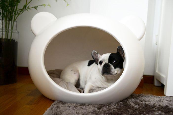 Pepa´s House :La Mascota de Olivia