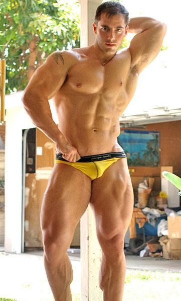 Yellow Gay 61