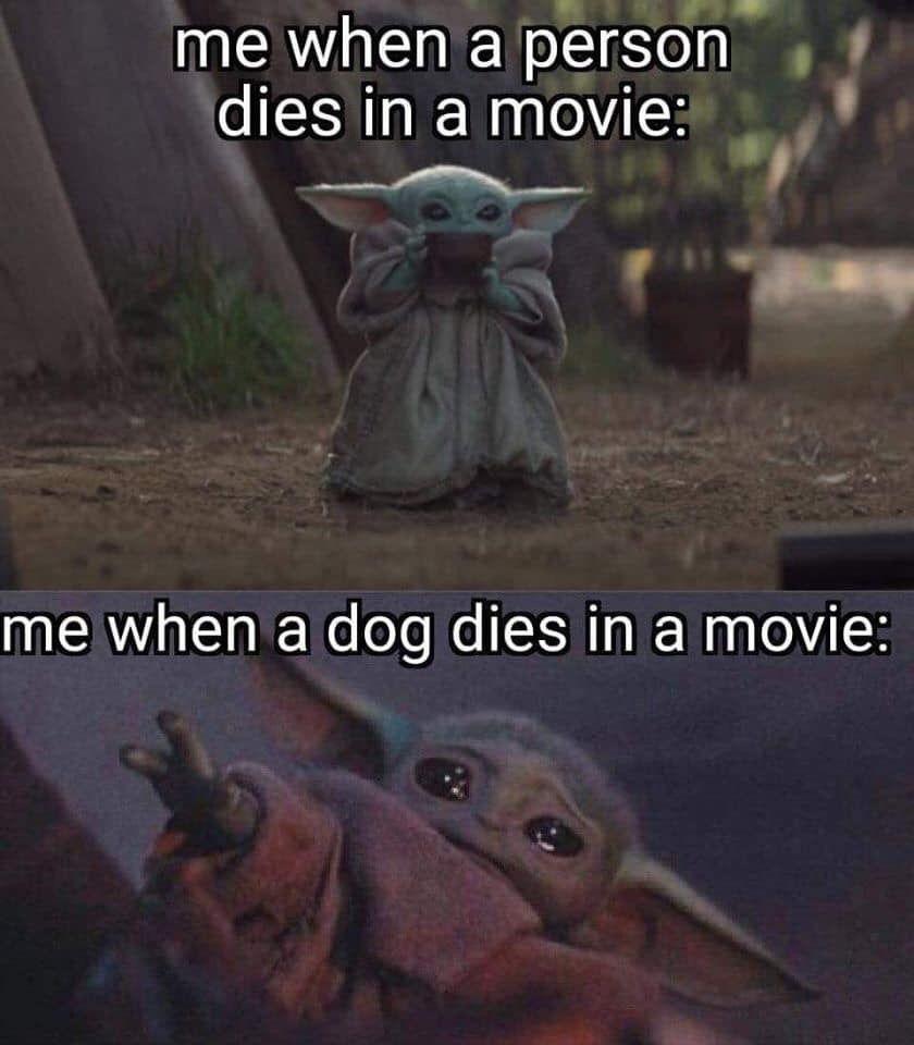 Pin By Sandi Villalobos On The Child Yoda Funny Yoda Meme Yoda
