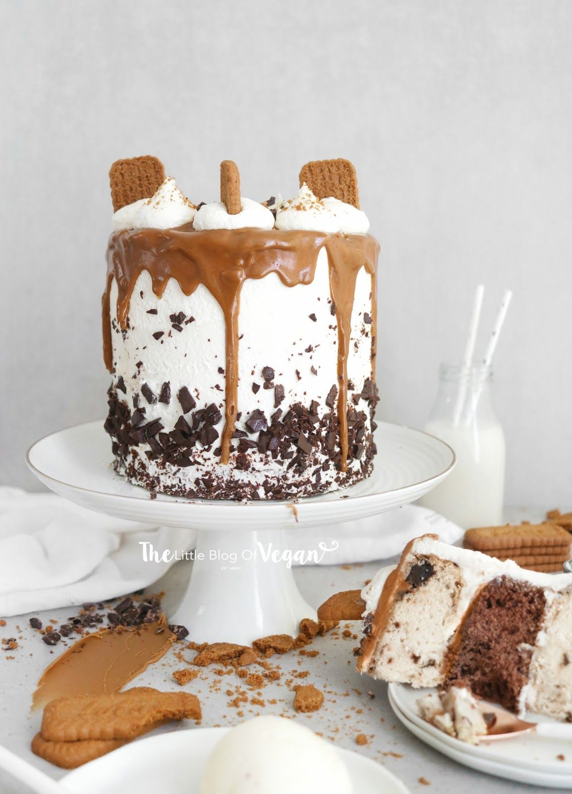 Chocolate Chip Biscoff Cake Recipe Cake Recipes Biscoff