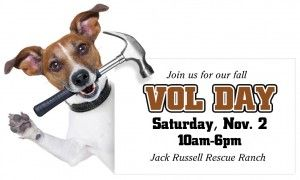 Join us for Fall Voll Day on Saturday, Nov. 2! Click the pic to get info.