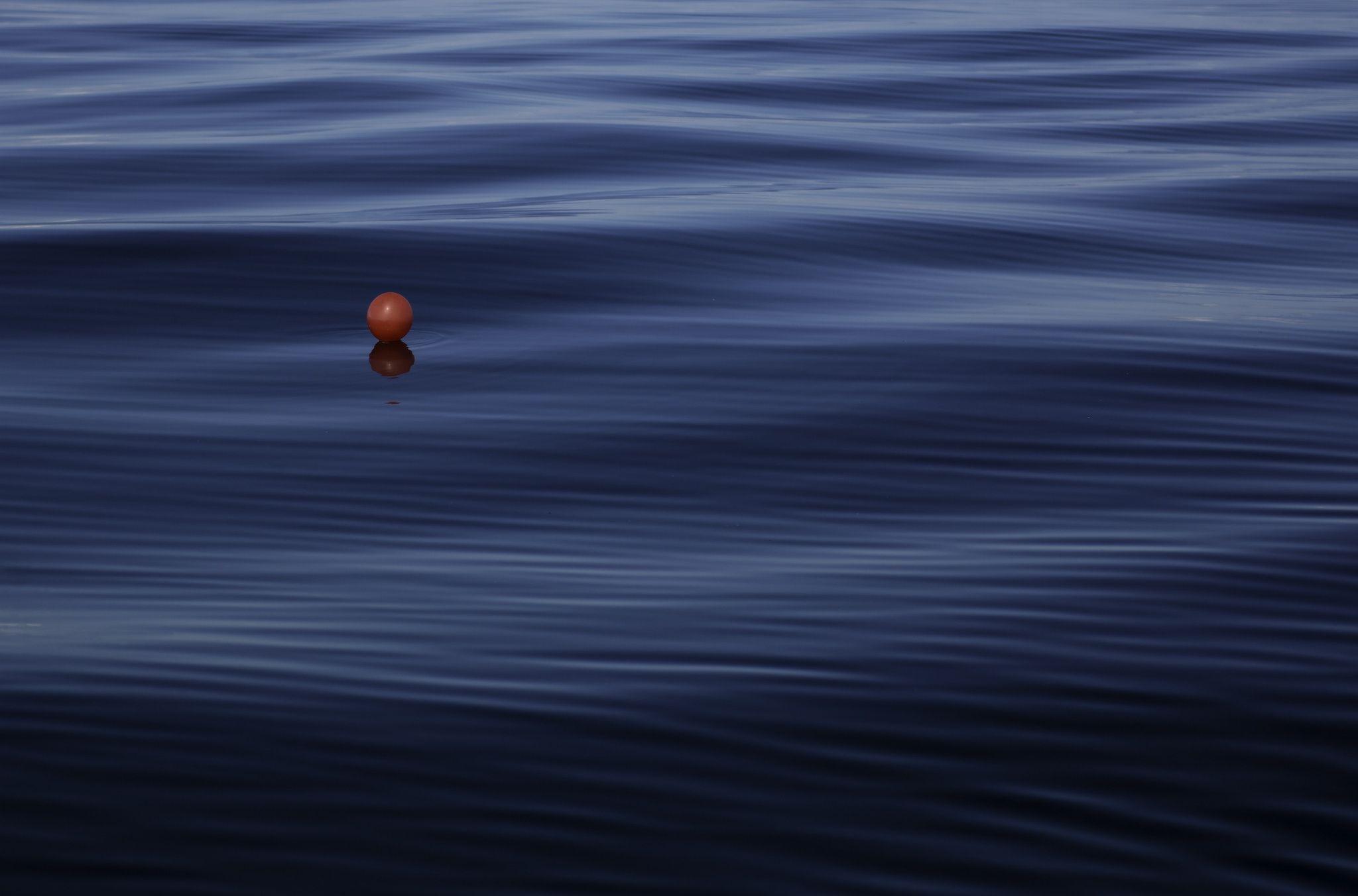 Tuna Fishing by Noah Rosen on 500px