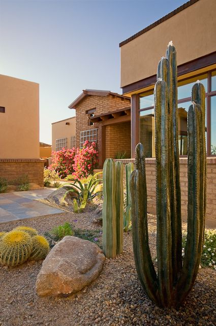 This Three Or Four Bedroom Plan Features An Impressive Great Room At The Heart Of The Home The Main En Succulent Landscape Design Xeriscape Desert Landscaping