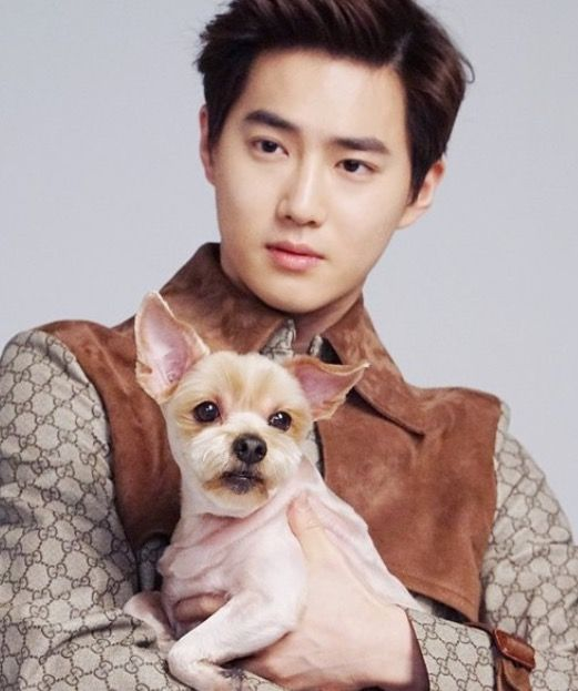 Image result for suho byul