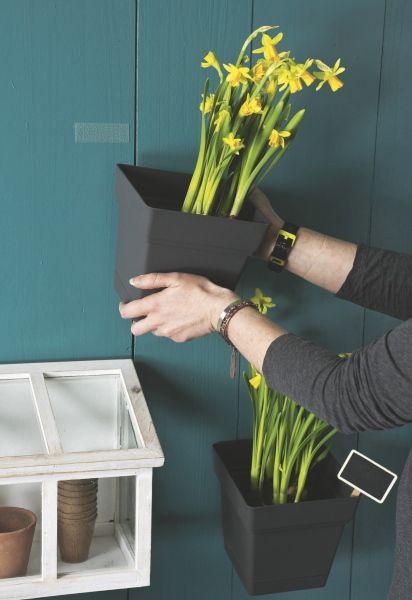 Les 25 meilleures id es de la cat gorie fixer sans percer sur pinterest net - Mur de fleur interieur ...