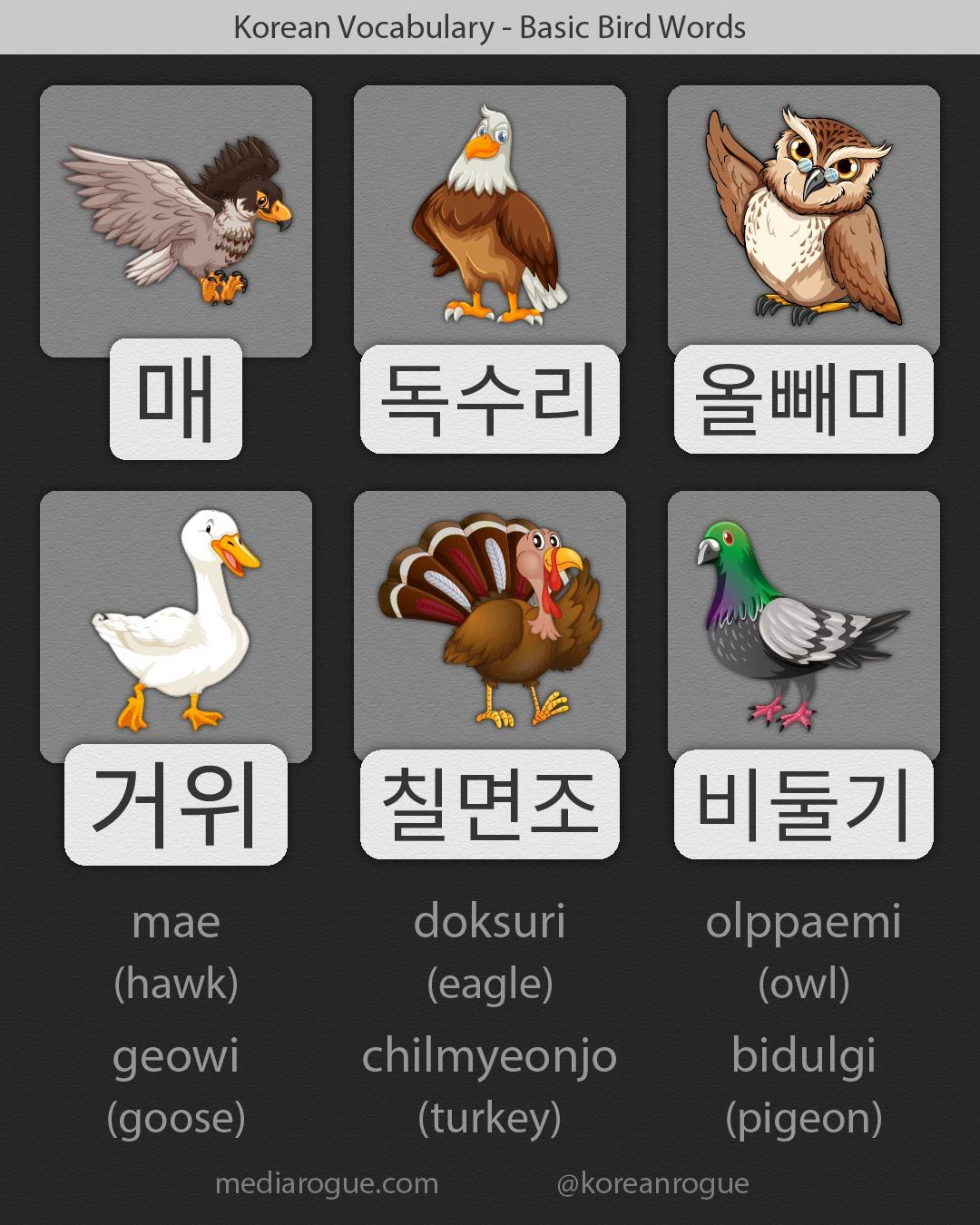 These are a handful of bird names in Korean  They are common