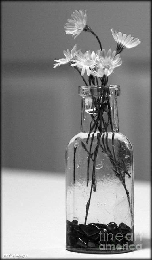 still life with flowers in black and white life