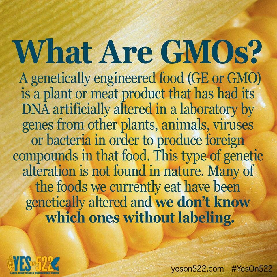 Genetically Modified Food Gmo Facts Gmo Foods