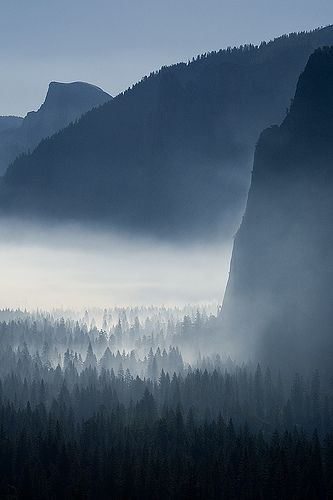 Yosemite the morning | 출처: fredlab