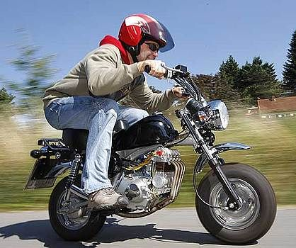honda monkey | motorcycles | pinterest | honda and mini bike