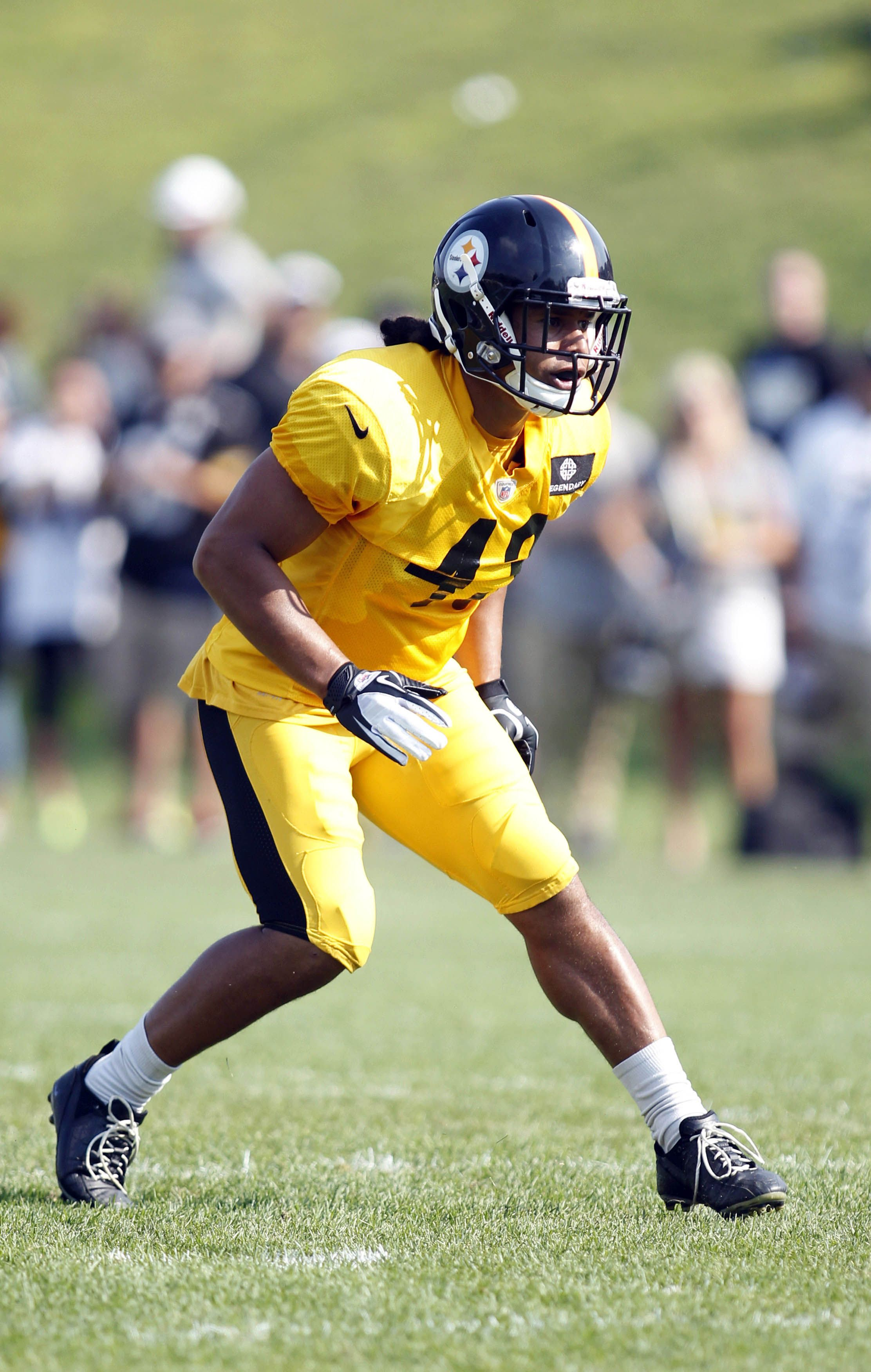 Pittsburgh Steelers strong safety Troy Polamalu