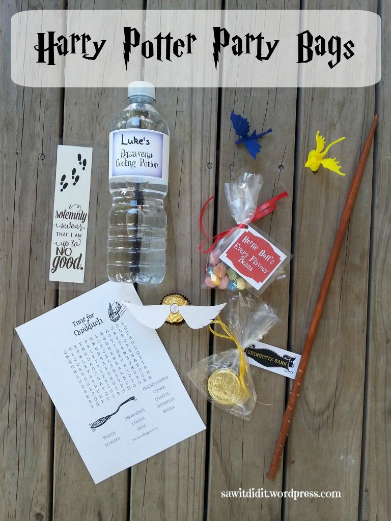 Harry Potter Inspired Birthday Party Part 5 Birthday