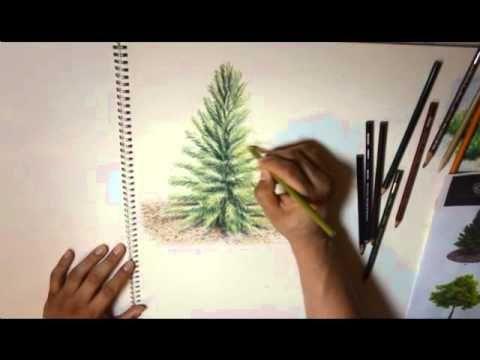 Tutorial de arboles muestro el proceso desde como trazar, aplicar colores base, sombras propias y proyectadas y texturas del foliaje disculpen la duracion, i...