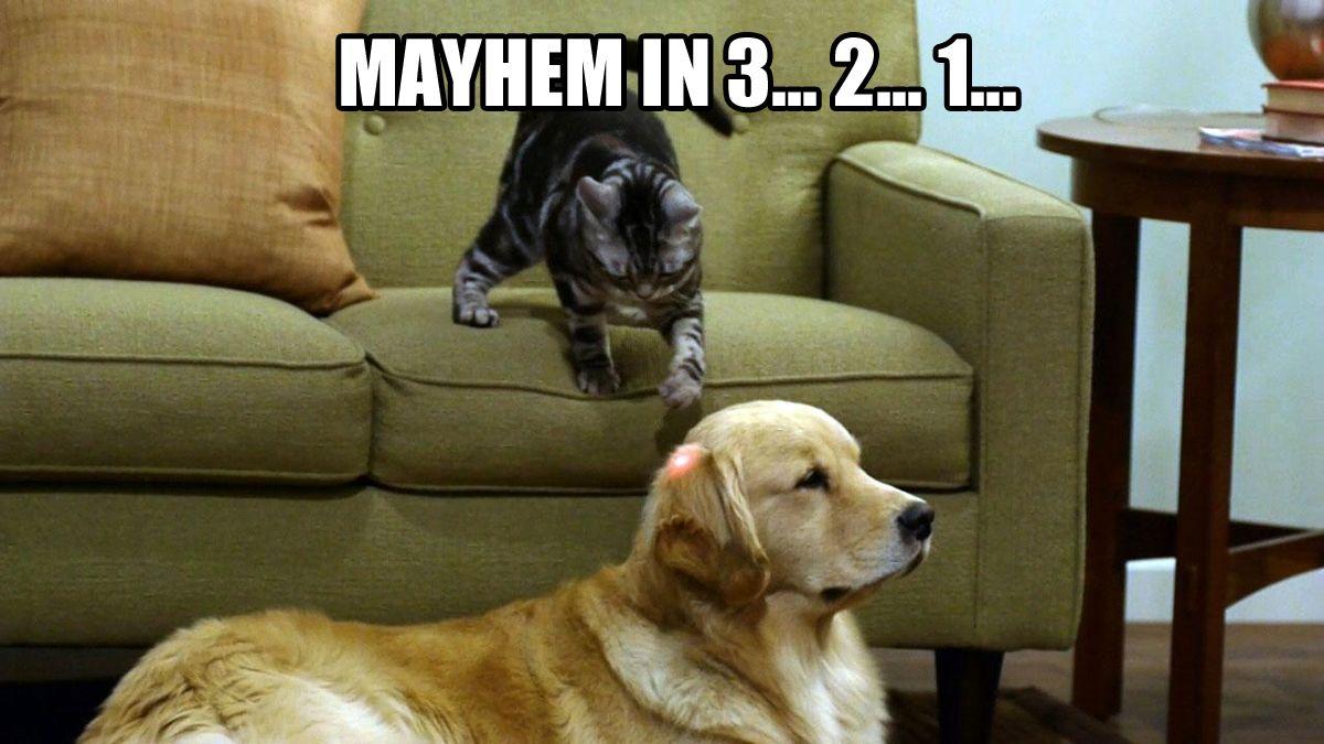 Funny Meme For Sad : Found on humour memes and random