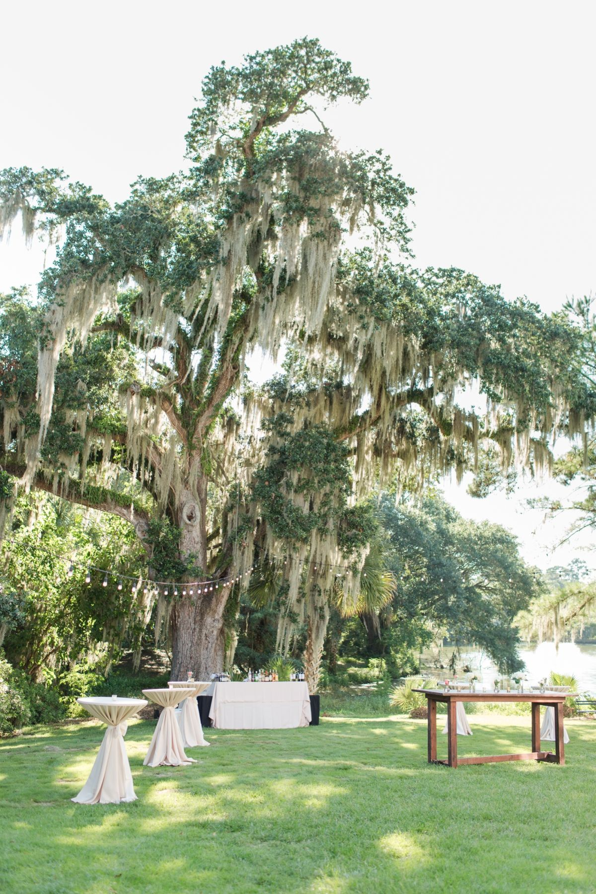 Charleston wedding venue south carolina wedding plantation wedding charleston wedding venue south carolina wedding plantation wedding southern wedding outdoor ceremony tent reception open air cocktail hour junglespirit Images