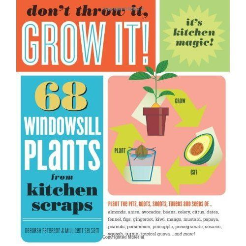 Windowsill plants from kitchen scraps-Cooking/science/nature camps