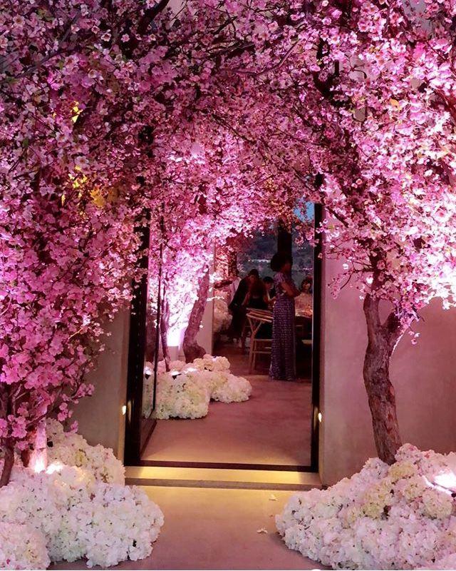 Cherry Blossom Cherry Blossom Theme Cherry Blossom Wedding