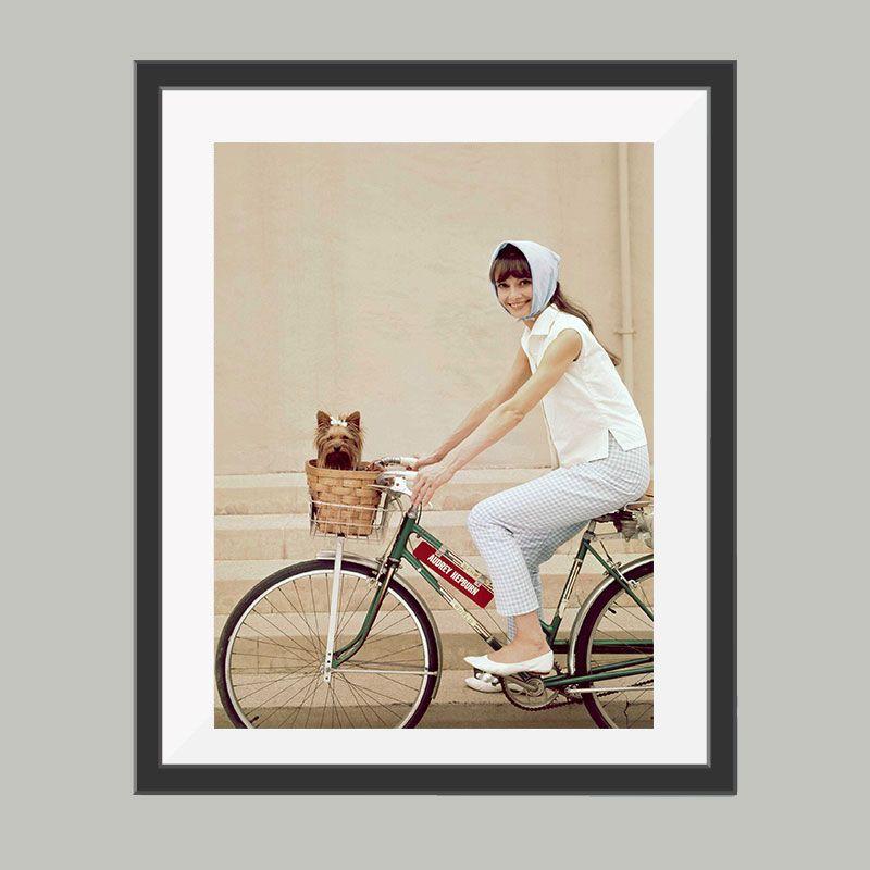 Audrey hepburn poster full color, leuke poster om bijvoorbeeld op te ...