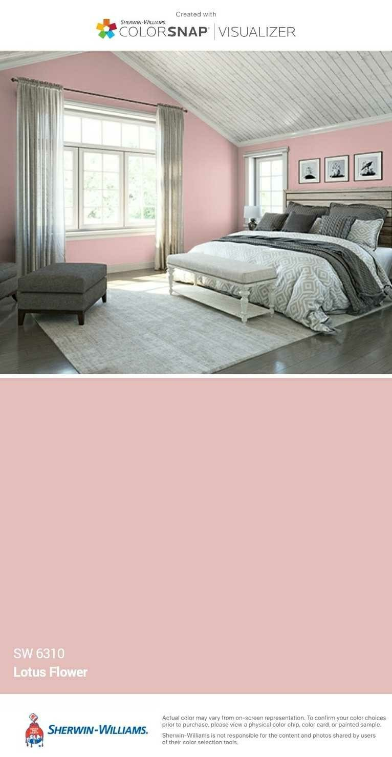 I just created this color palette with the Sherwin-Williams ...