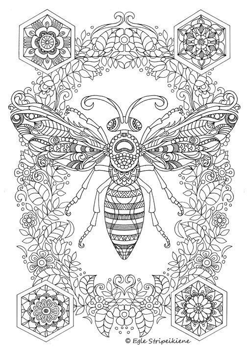 0f7c181821f9ef2090b84d77fa27a4b3 Jpg 508 709 Insect Coloring Pages Bee Coloring Pages Mandala Coloring Pages