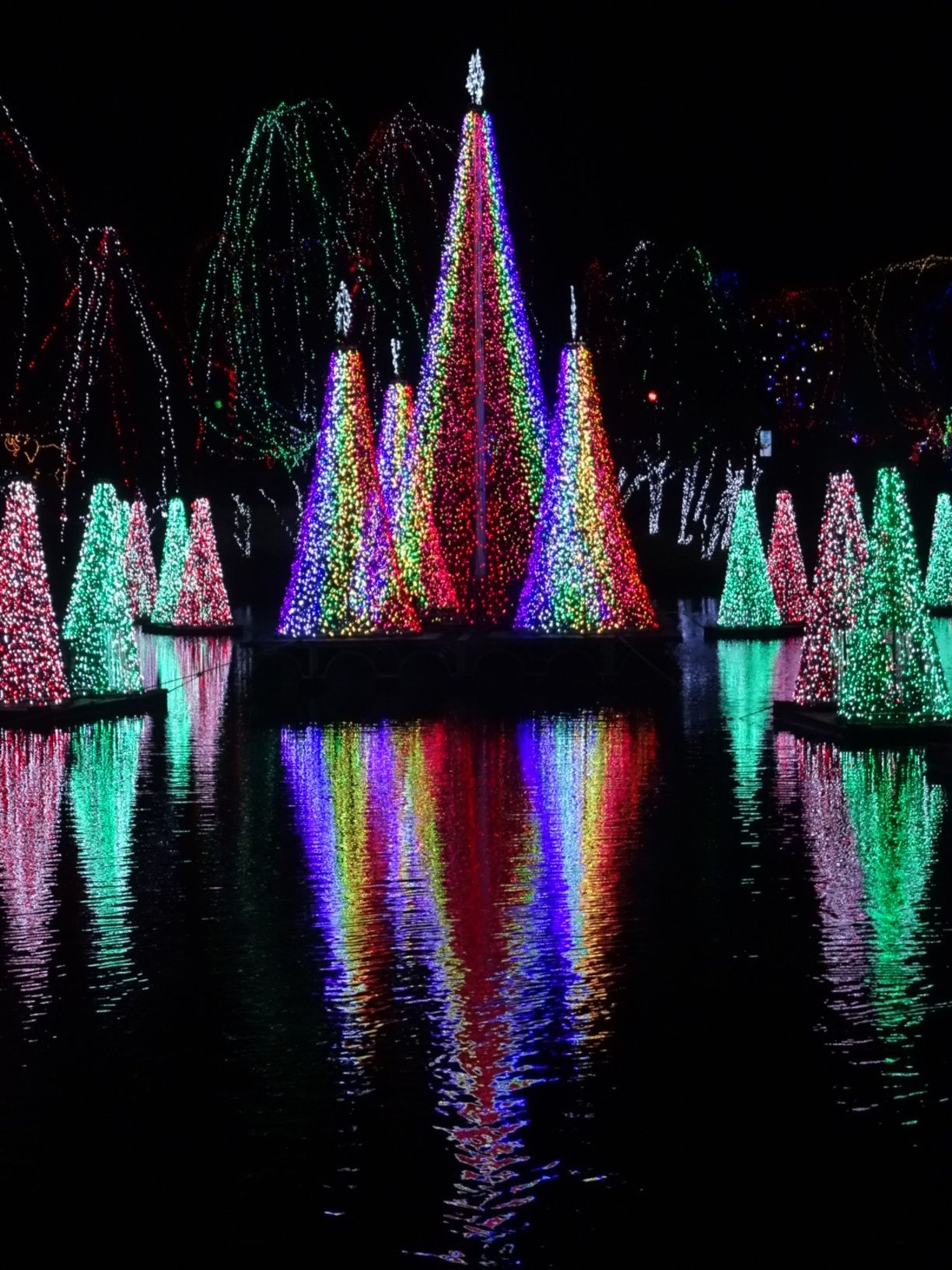Columbus Zoo And Aquarium Delaware County Ohio By Throwingsofas Columbus Zoo Zoo Lights Columbus Ohio Zoo