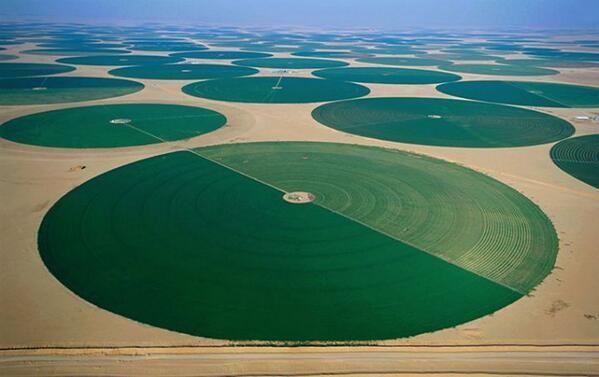 Travel Scenes ✈ on Saudi arabia, Deserts and Irrigation - new blueprint company saudi arabia