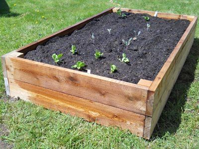 The Last Two Weekends Have Been Devoted To Acquiring Lumber, Building, And  Filling A Couple Of Raised Beds For Growing Vegetables. A Project.