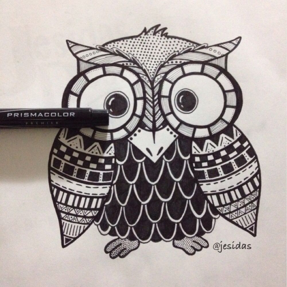 Cute Zentangle Black And White Owl Design Zentangle Owl Cute