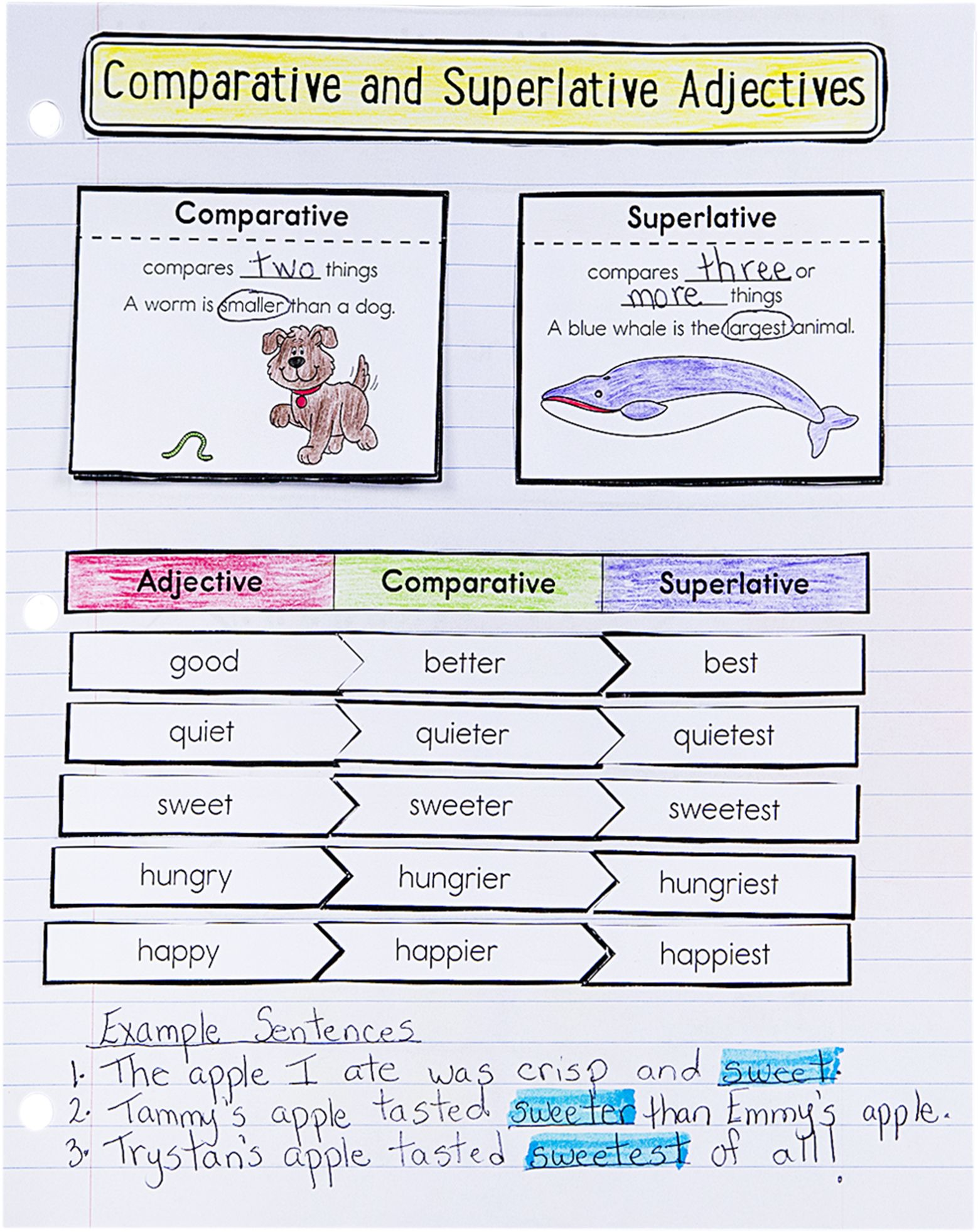 Interactive Notebook Template For Activity Comparing