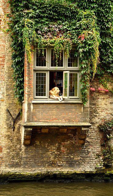 Go Hello World: Let's Visit Bruges! {Travel Inspiration