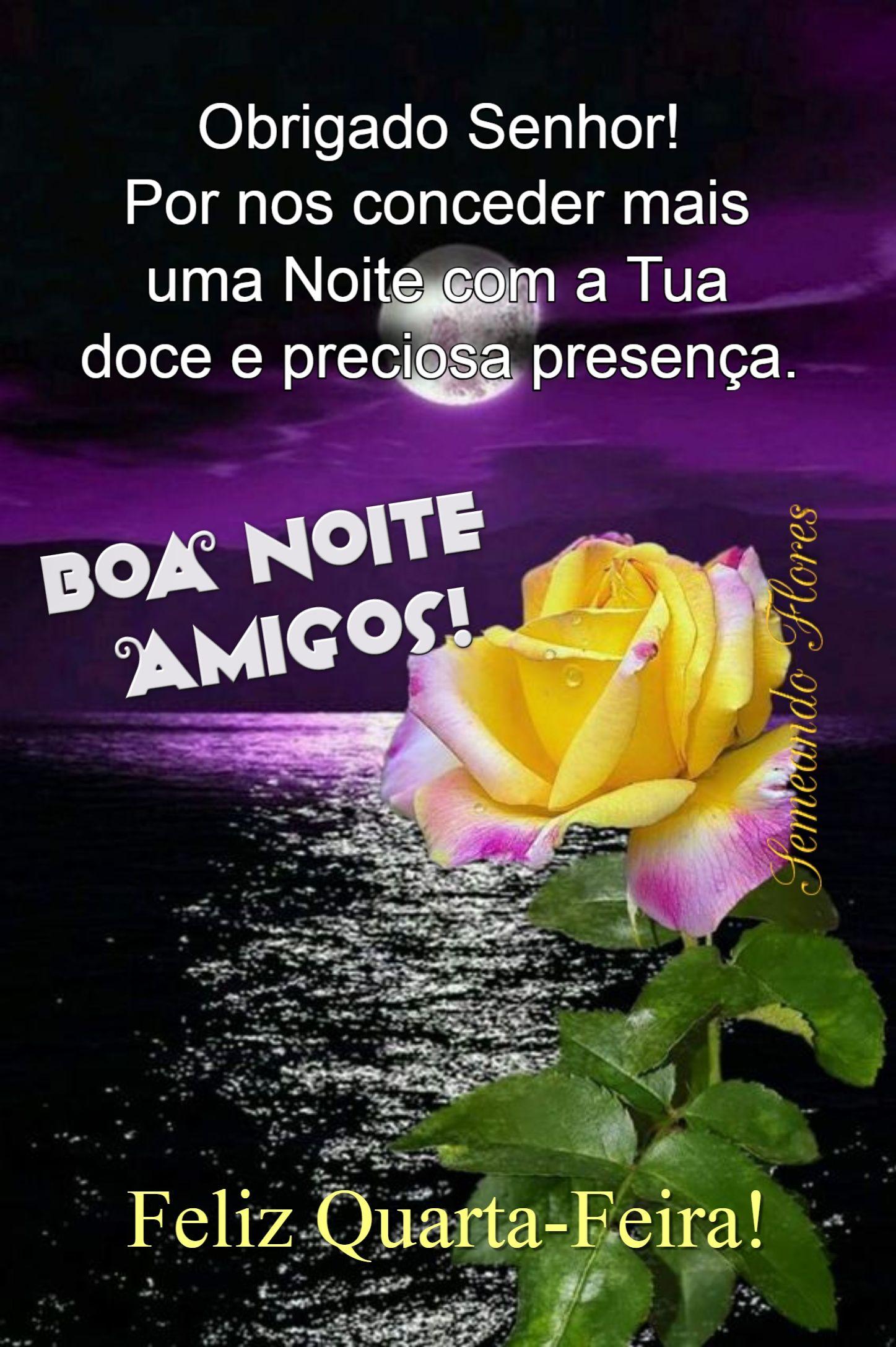 Pin De Tina Borges Em Amigos Com Imagens Mensagem De Boa Noite