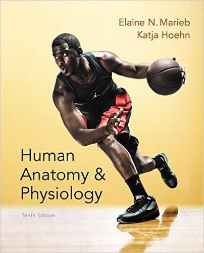 Human Anatomy & Physiology 10th Edition by Elaine N. Marieb, ISBN-13 ...