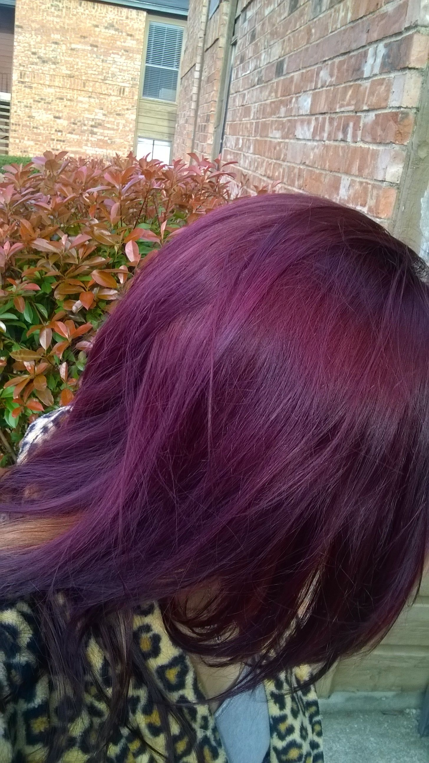 Almost done with my spring 2014 look. Color London lilac with a few drops of red intensifier. Will be blonde in front. Gallery