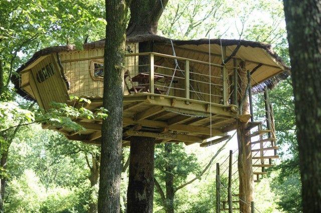 Casas en los árboles, Bois Landry Casas de arbol, El arbol y Casas - casas en arboles