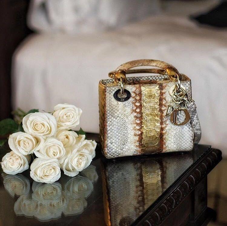 للبيع قطط شيرازية بيور On Instagram ماركات عالميه طبق الاصل وبارخص الاسعار شنط جواتي اكسسوارات ساعات ملابس اطف Lady Dior Bag Bags Beautiful Shoes