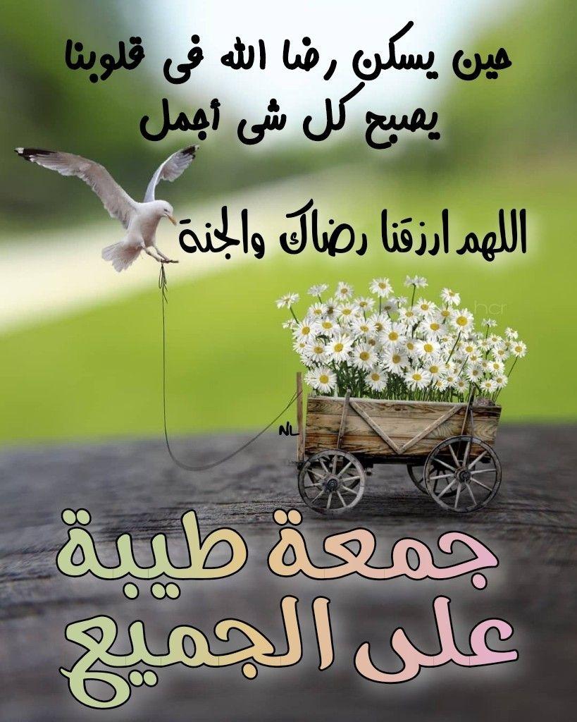 جمعة طيبة Morning Greetings Quotes Morning Greeting Morning Quotes