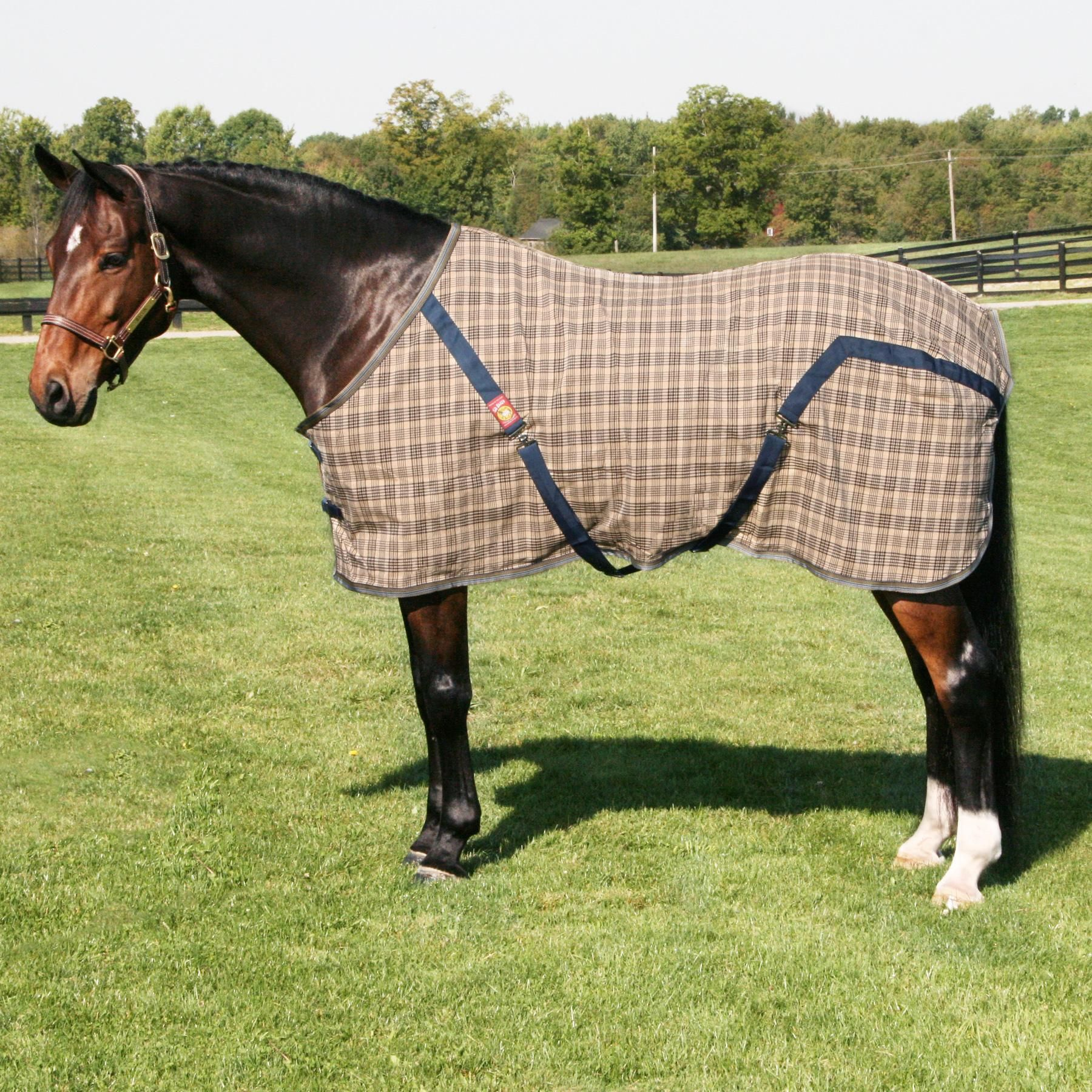 5a baker original stable sheet in stable sheets horse