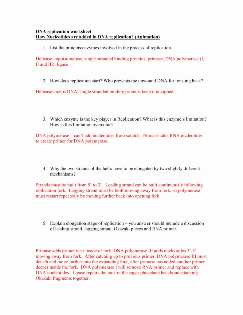 50 Dna and Rna Worksheet Answers in 2020 | Dna replication ...