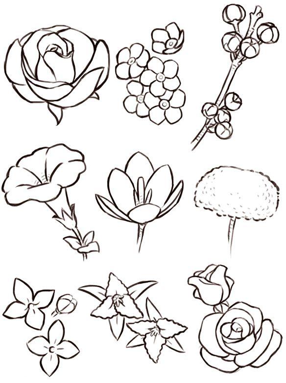 Раскраска Различные цветы | Самоучители по цветочным ...