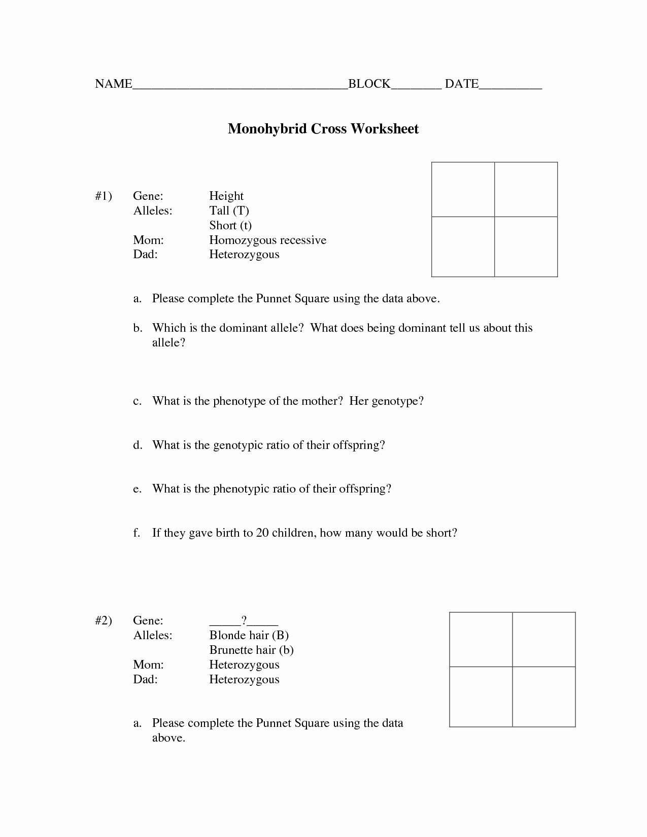 Dihybrid Cross Worksheet Answers New Punnett Square