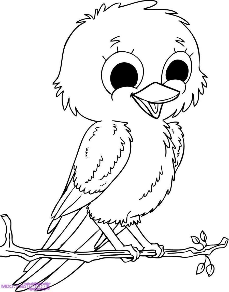 Desenhos de Animais para Colorir - @ Desenhos Para Colorir | Riscos ...