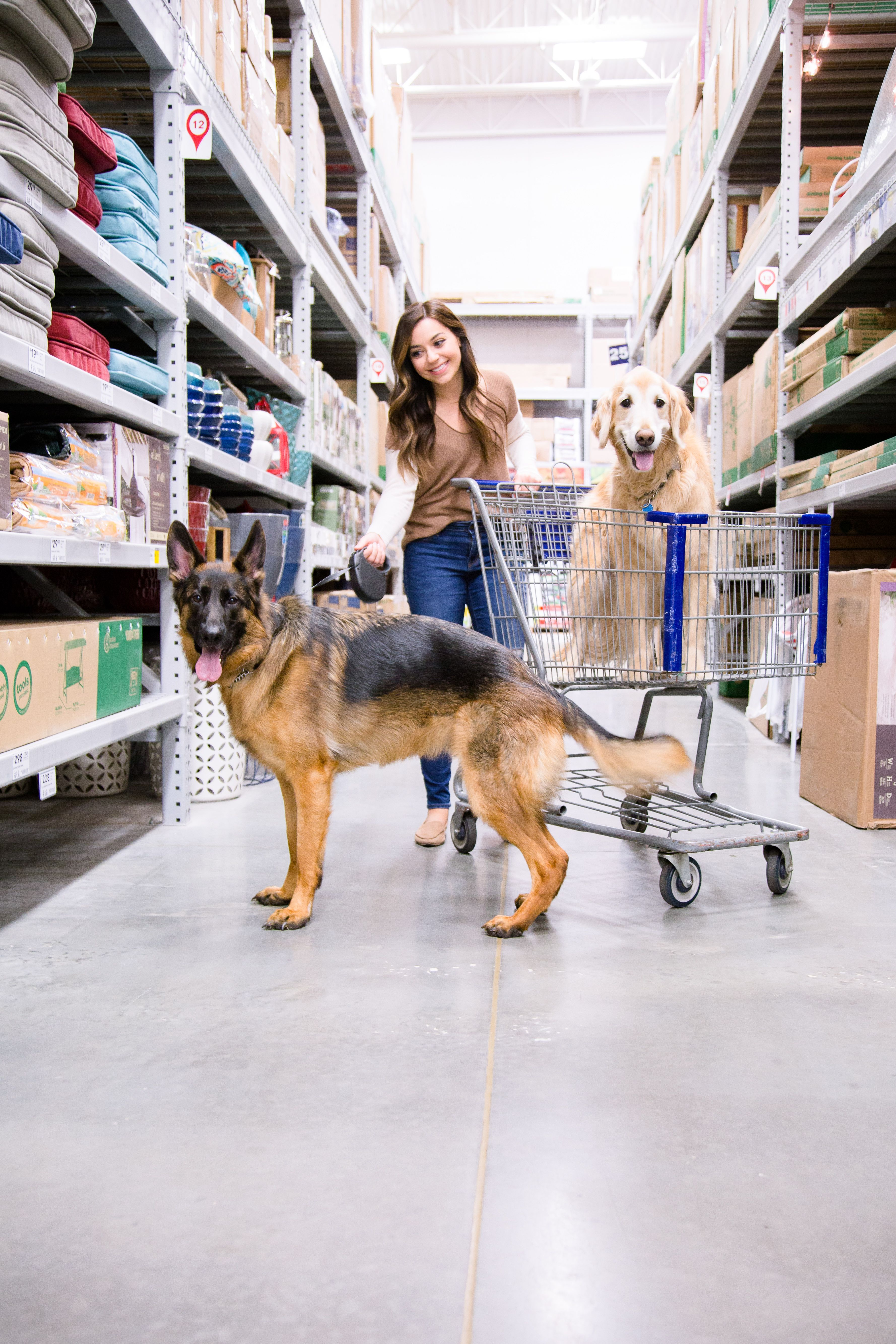 44 Dog-Friendly Stores That Allow You To Shop With Your Pet
