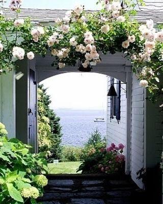 My Kind Of Backyard Via Pinterest Garden Roses View Ocean Cottage Garten Hauswand New England Hauser