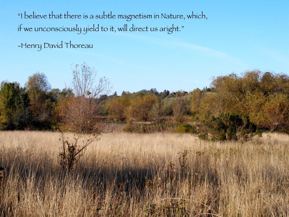 Henry Thoreau Nature Quotes
