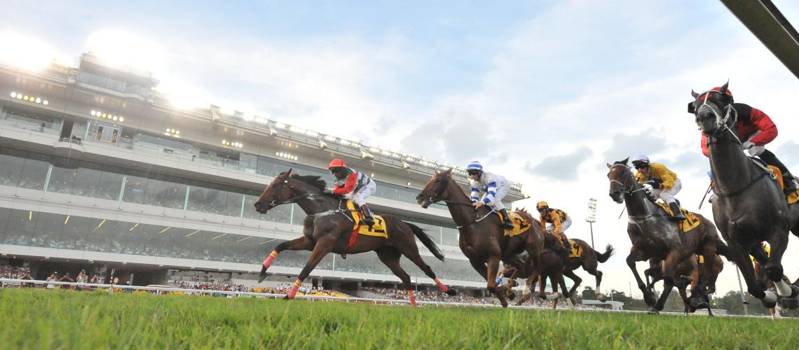 Online horse betting malaysia mauro betting carcareone