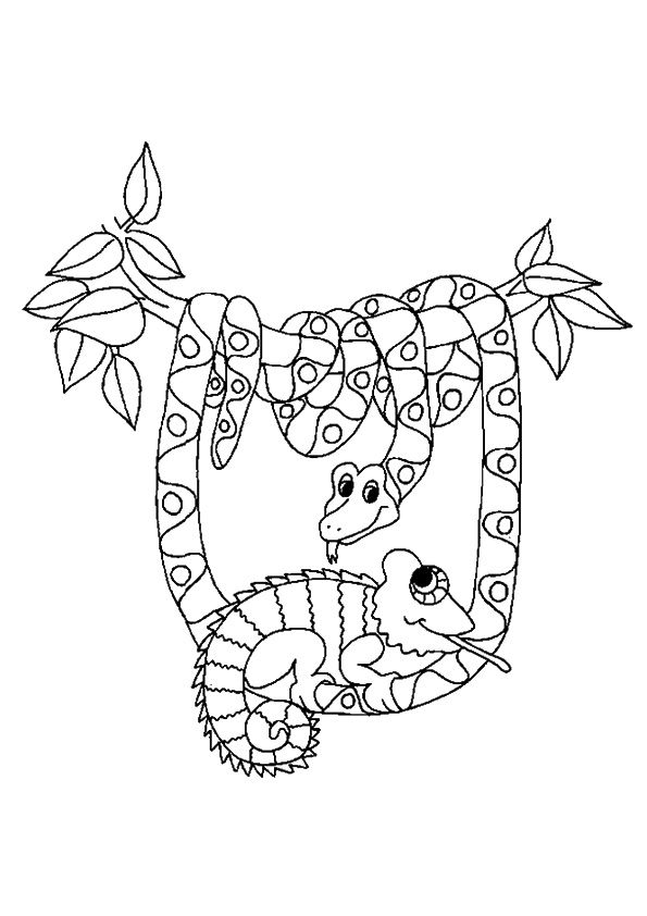Click Share This Story On Facebook Coloring Pages Rainforest