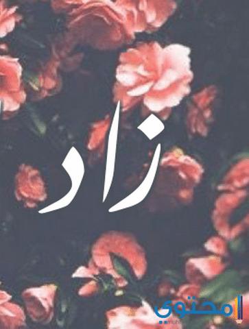 معنى اسم زاد وصفات شخصيتة Zad معاني الاسماء Zad اجدد اسماء الاولاد Okay Gesture