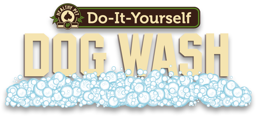 Do it yourself dog wash at healthy pet in austin texas clients do it yourself dog wash at healthy pet in austin texas solutioingenieria Gallery