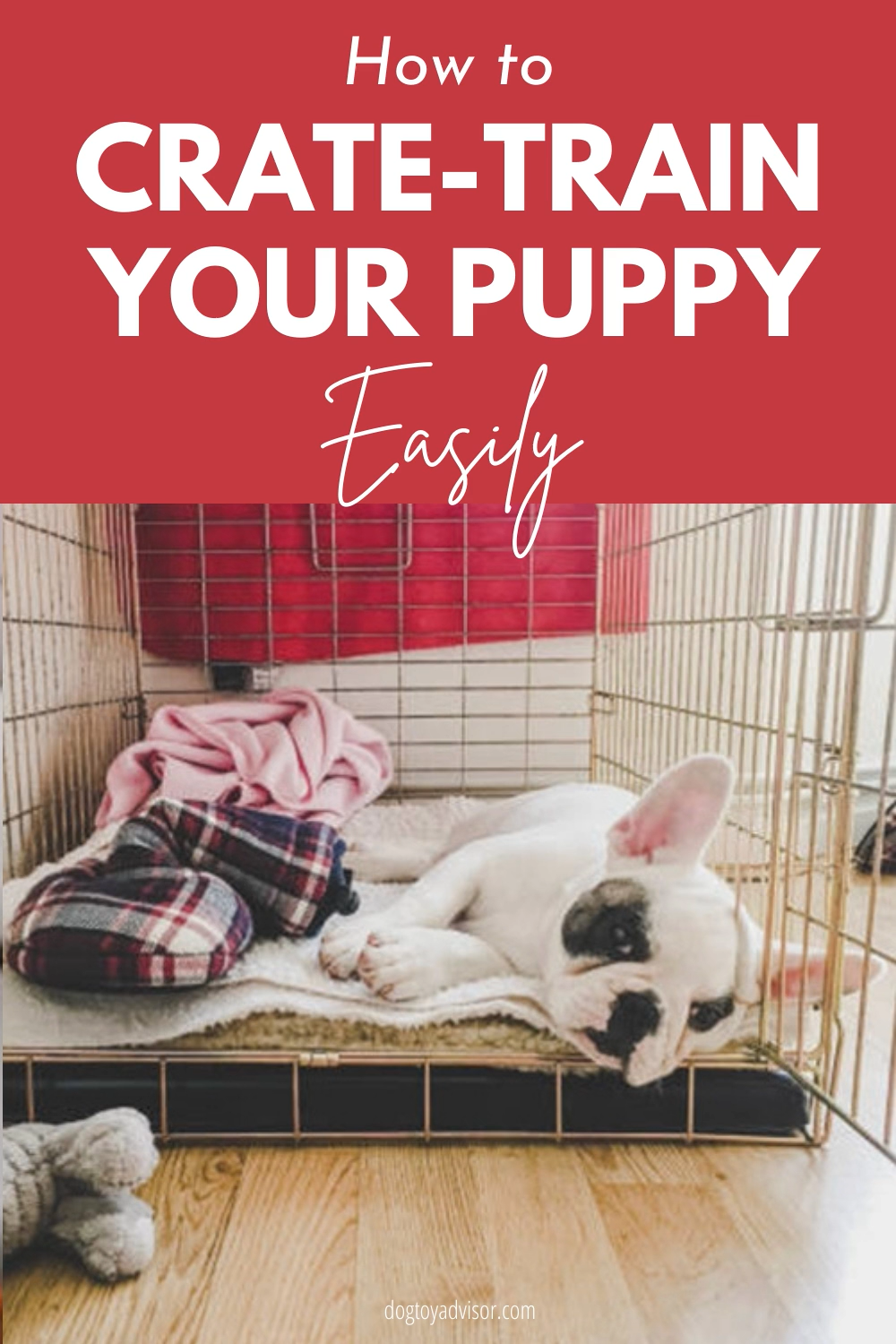 Crate Training Your Dog While Working a Full-Time